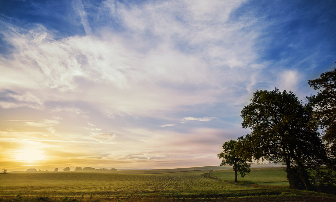 paysage-h5d-50c